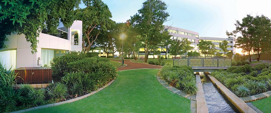 office in the garden. The Garden Office Park In